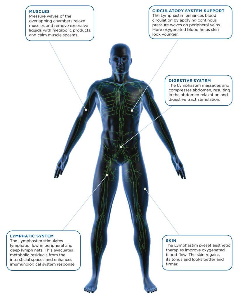 Lymphatic System - The Nantwich Clinic - Podiatrist near Crewe