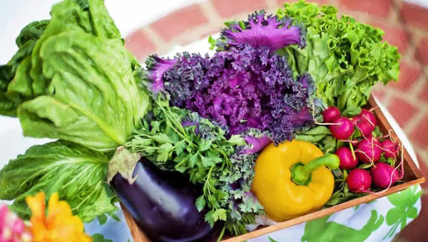Nutrition and Health | The Nantwich Clinic | Health Care & Self Care | Nantwich | Cheshire